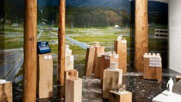 I vincitori della Biennale di Architettura
