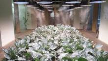 La vertical farm di Kono Designs per un ufficio autosufficiente