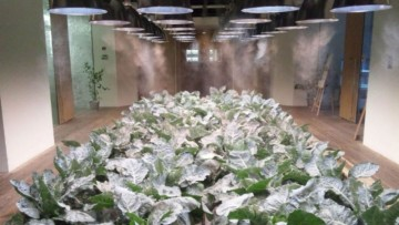La vertical farm di Kono Designs per un ufficio autosufficiente