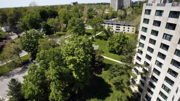 Istat: il Piano del verde urbano e' ancora poco diffuso