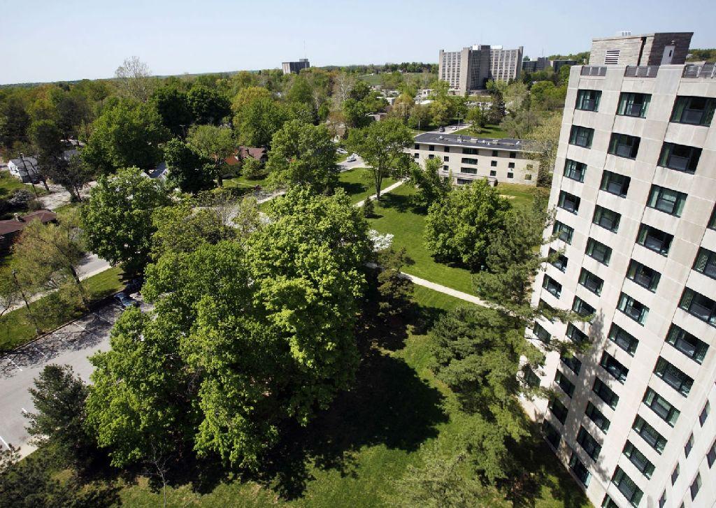 istat il piano del verde urbano e 39 ancora poco diffuso