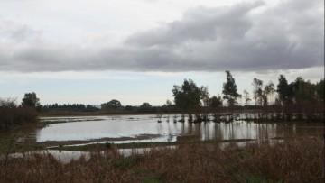 """Alluvione in Sardegna: """"era gia' tutto scritto"""", secondo gli architetti"""