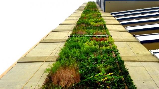 Il Giardino Verticale Di Vitoria Gasteiz
