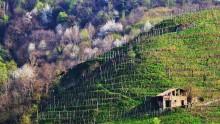 Il Fondaco del vino, gli architetti nella valle del Prosecco