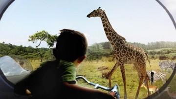Zootopia, la visione di Big per lo zoo del futuro