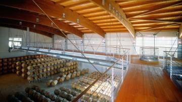 Architettura del vino: cantina Terre da Vino a Barolo (Cuneo)