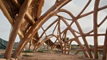 Architettura organica: l'uso costruttivo dell'arundo donax secondo CanyaViva