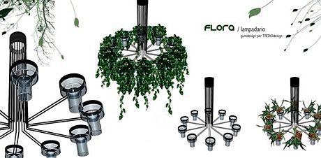 wpid-2913_flora.jpg