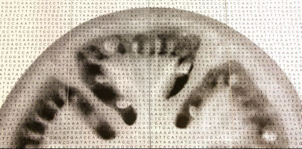 wpid-4601_GenomatomatesobreDekton.jpg
