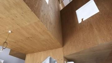 L'albero principio generatore di una casa