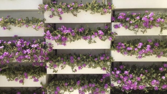 Progettazione esterni come scegliere i vasi per giardini - Architettura esterni giardini ...