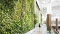 Verde verticale: le caratteristiche esecutive e gestionali