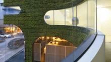Verde in architettura: la progettazione di chiusure verticali vegetate