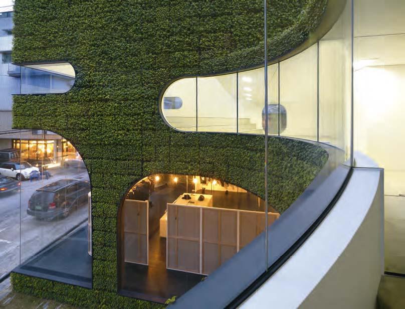 Vista dall'interno del primo piano, della connessione tra facciata vegetata e chiusure trasparenti