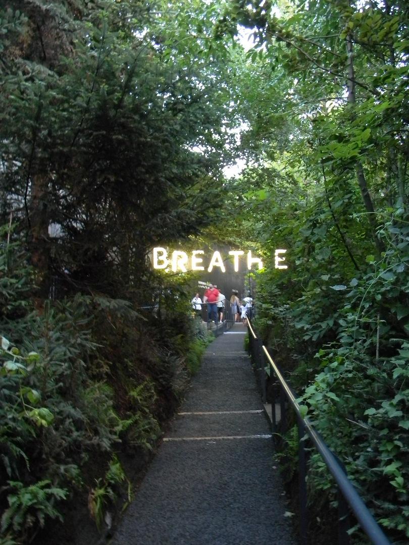 Padiglione dell'Austria: appena varcata la soglia della corte, salendo verso il bosco, si viene accolti da una scritta al neon che recita ancora «breathe». (© Edoardo Bit)