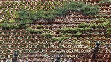 Verde in architettura: la progettazione di rivestimenti vegetali