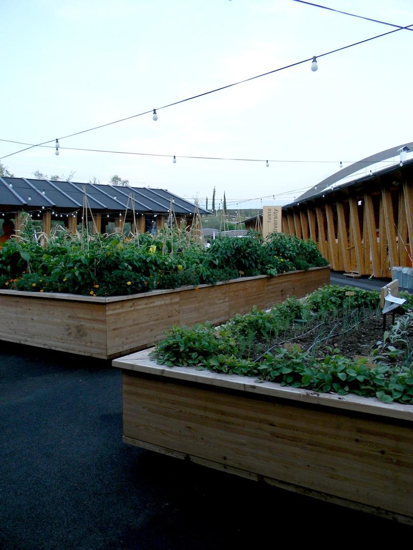 Piazza della Biodiversità: gli orti in cassetta al centro della piazza. (© Edoardo Bit)