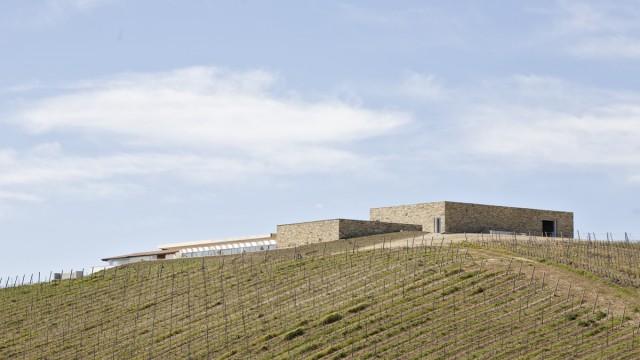 Architettura del vino: la Cantina vinicola Su'entu
