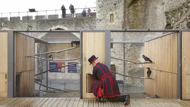 Una nuova casa in legno per i corvi della torre di londra for Costo della costruzione di una nuova casa