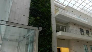 Giardini verticali italiani per gli Emirati Arabi Uniti