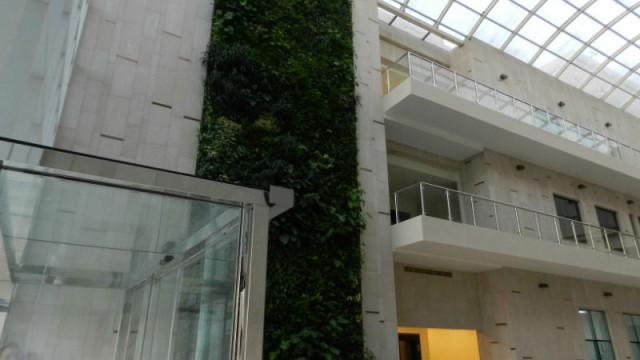 Fibra di lino un isolante organico per tetti pareti e - Pannelli per giardini verticali ...