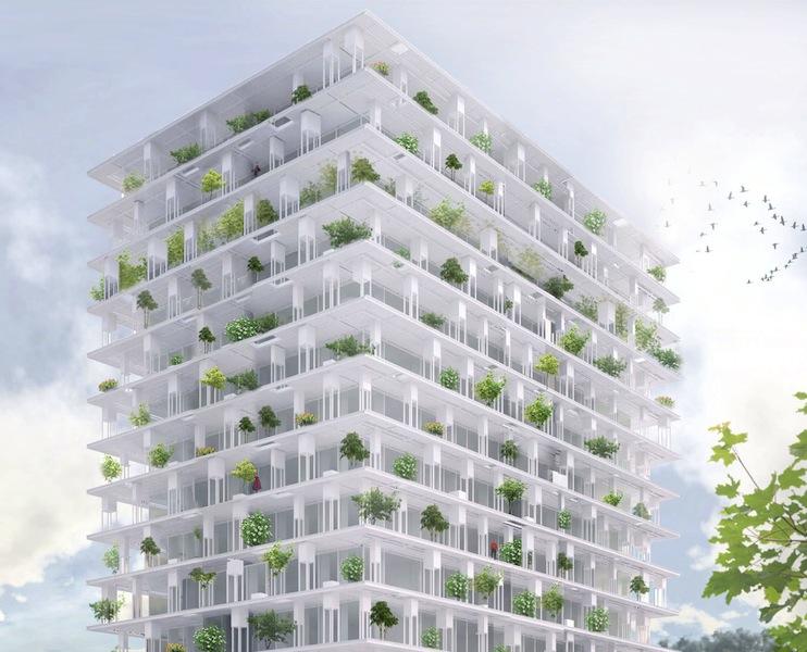 Render di un progetto di inverdimento per edificio alto (fonte: ROOFlife)