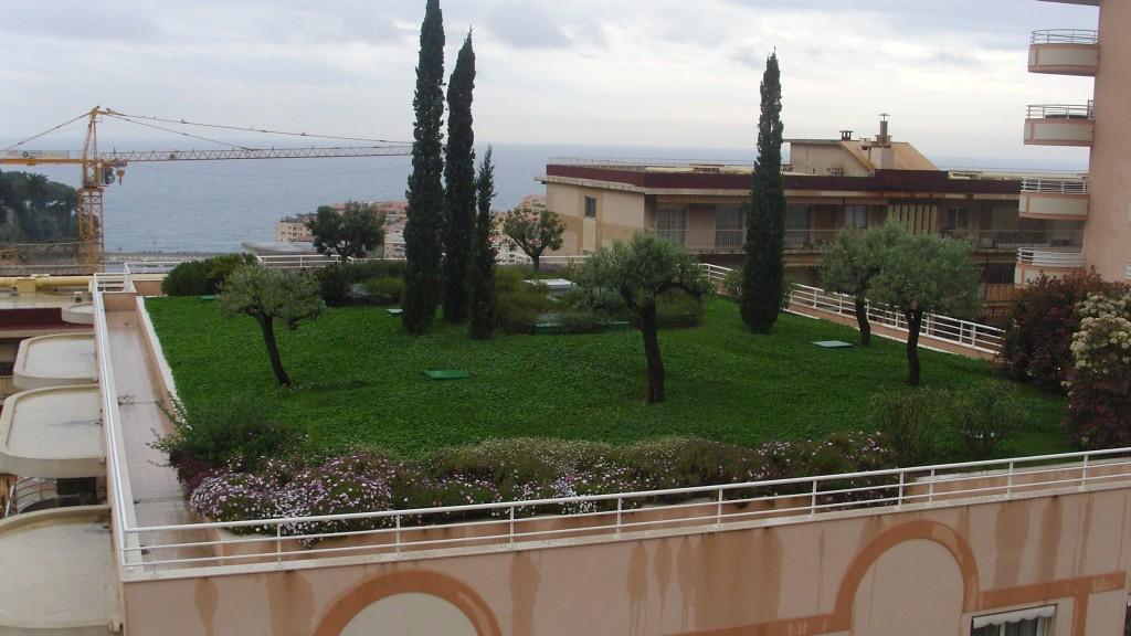 Come scegliere la vegetazione delle coperture a verde for Architetto giardini roma