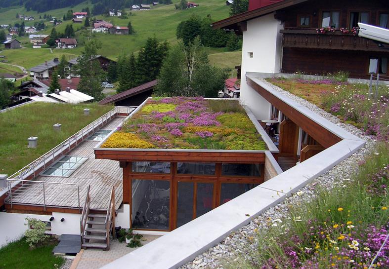 Copertura a verde estensivo (fonte: Optima Giardini Pensili)