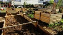Riapre un Giardino Nascosto nel cuore di Milano