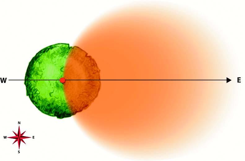La zona colorata rappresenta schematicamente l'area bioenergetica creata dall'intersezione fra l'albero e il vettore elettromagnetico