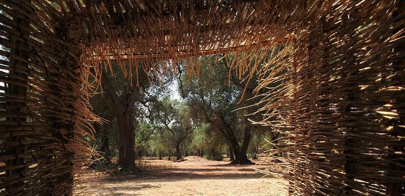 Esperimento di Land Art – Nidificare i Paduli (2014)