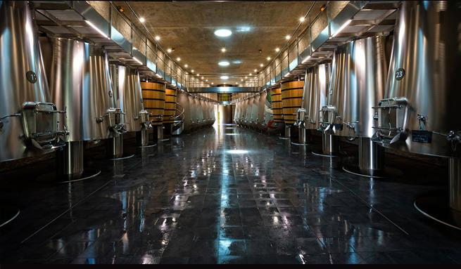 fermentazione 0_Copy Philippe Labeguerie