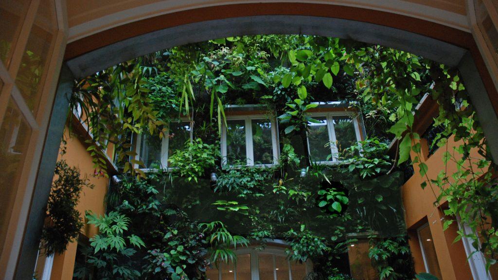 """Casa di Patrick Blanc, l'agronomo celebre al mondo per i suoi """"muri verticali"""" (foto © Patrick Blanc)"""