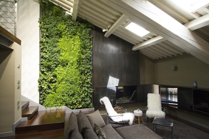 Un giardino verticale in un loft mansardato a vicenza - Prato verticale per interni ...
