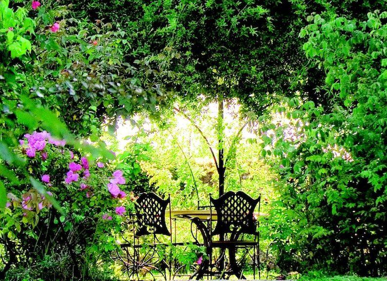 Progettare giardino del giardino e del paesaggio bellissimi fiori e arbusti foto di aallm with - Progettare il giardino ...