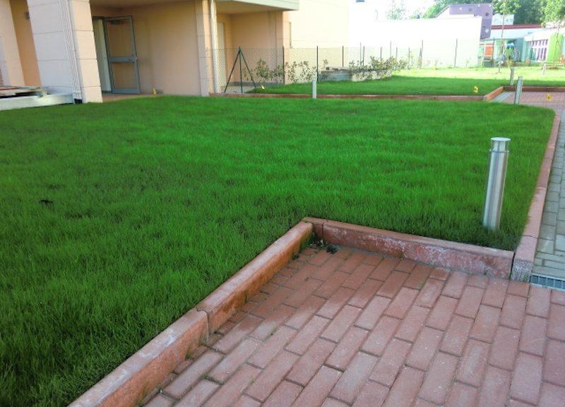Giardino pensile condominiale (realizzazione di Gardenalto snc, substrati per verde pensile di Vulcaplant srl)