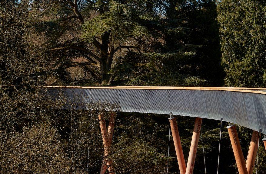 Stihl Treetop Walkway, passeggiata nella natura su passerella e struttura in legno, progetto vincitore dei Wood Awards 2016 nella categoria Commercial & Leisure