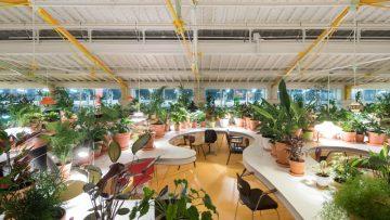 SelgasCano per Second Home Lisboa: il secondo ufficio più bello del mondo?