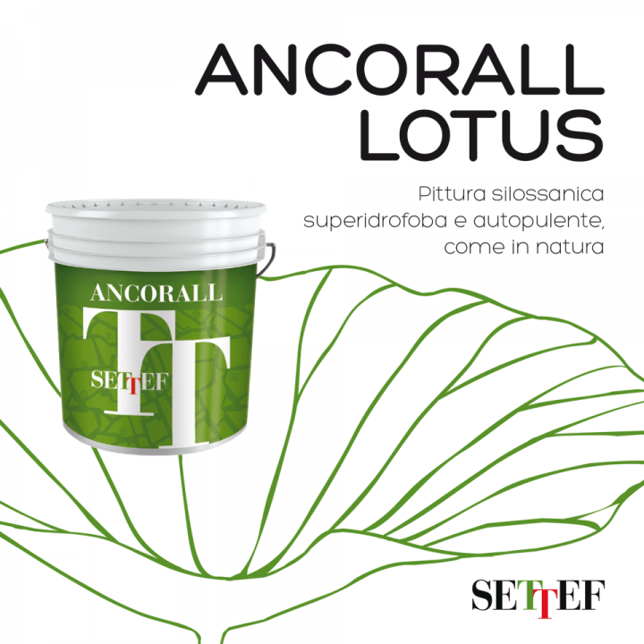 Settef_Ancorall_Lotus