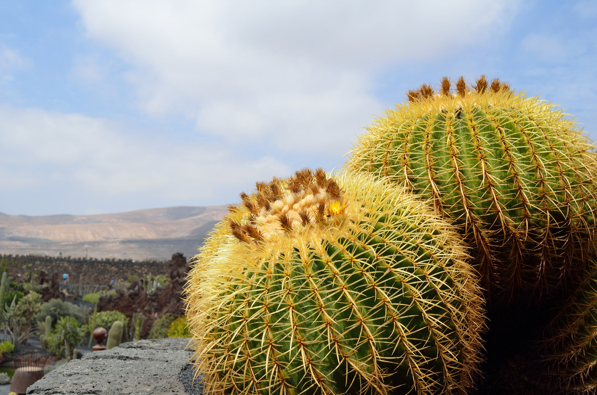 © Julen Ruiz Luzuriaga/Flickr.com