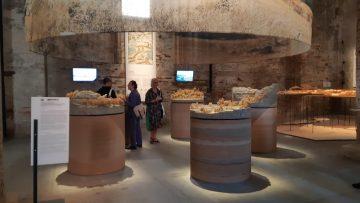 Biennale di Venezia 2018: com'è il Freespace di Yvonne Farrell e Shelley McMamara